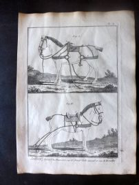 Diderot C1790 Antique Print. Sellier. Horse Saddle 08